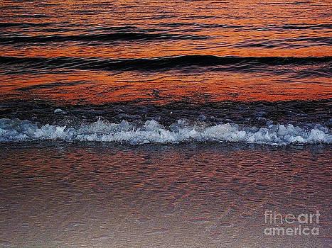 Sunset Reflection by Zsuzsa Lado