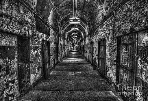The Long Walk by Arnie Goldstein