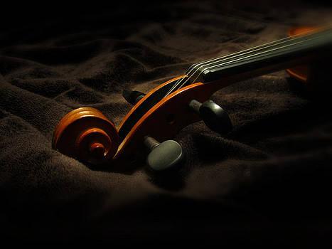 Dale Jackson - Violin