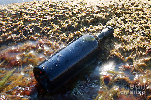 Wine in the bottle. by Alexandr  Malyshev