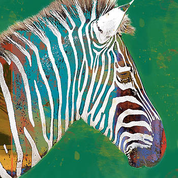 Zebra - stylised drawing art poster by Kim Wang