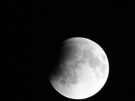 4-14-14 Moon by Susan Sidorski