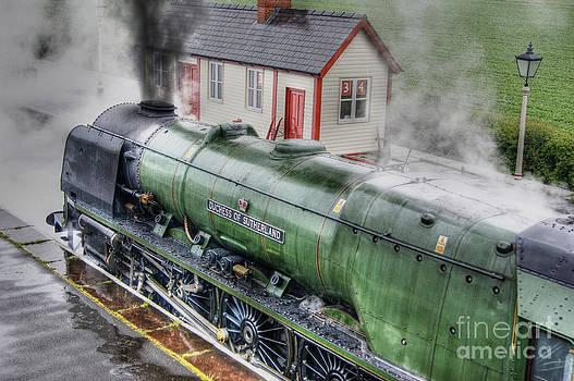 46233 Duchess Of Sutherland by David Birchall