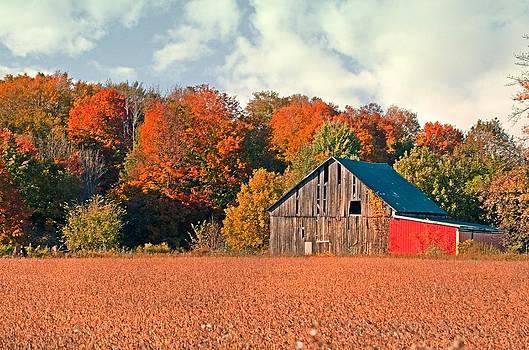 Autumn Barn by Cheryl Cencich