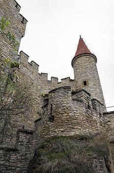 Castle tower. by Fernando Barozza