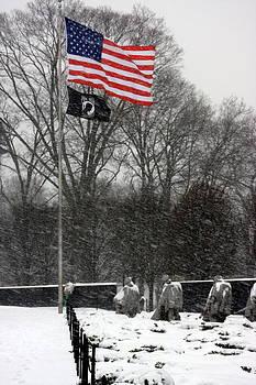 Korean War Memorial by Andrew Romer