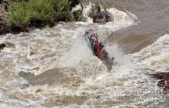 Steven Ralser - rio grande rafting