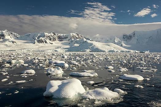 The Gerlache Strait by Ashley Cooper