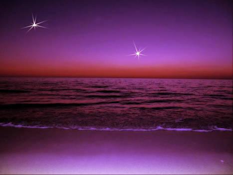 The Two Stars by Zsuzsa Lado