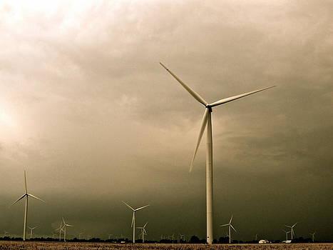 Windmill Series by Sarah Leer