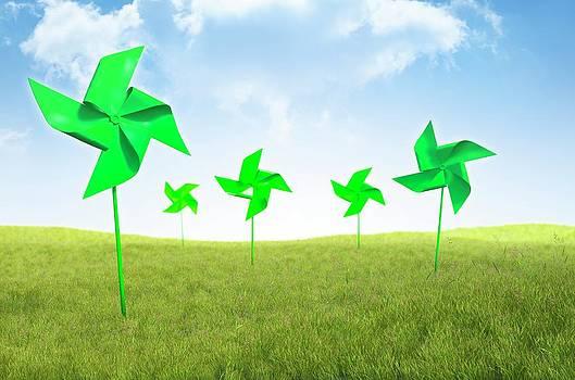 Renewable Energy by Andrzej Wojcicki
