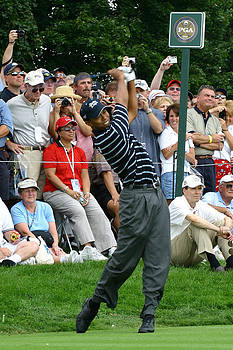 Tiger Woods by James Marvin Phelps