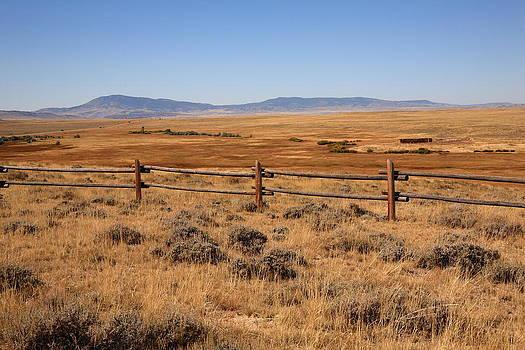 Frank Romeo - Wyoming Landscape