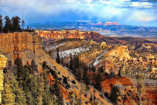 Bryce Canyon  by Marti Green