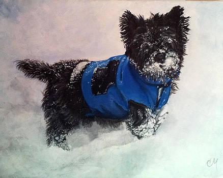 Snow Day by Christine Maeda