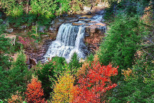 Mary Almond - Blackwater Falls