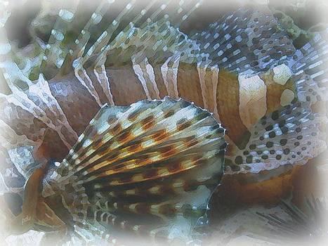 Fish by Philip White