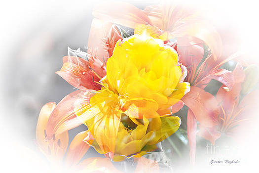 Gunter Nezhoda - Flower Burst