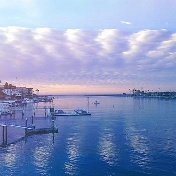 7:30am On The Bay by Ariane Moshayedi