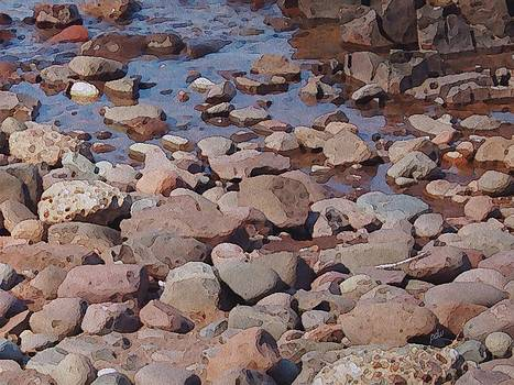 Rocky Shore by Philip White