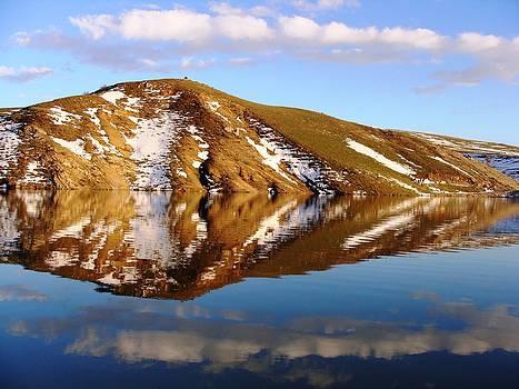 Water Reflection by Faouzi Taleb
