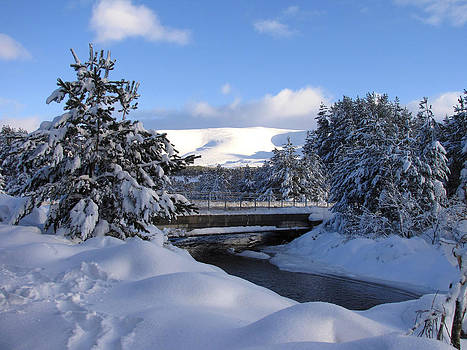 A Bridge in the Snow by Jacqi Elmslie