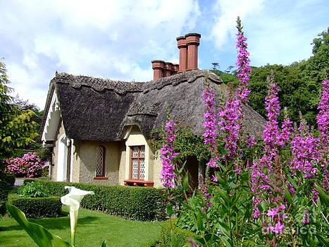 Joe Cashin - A cosy cottage
