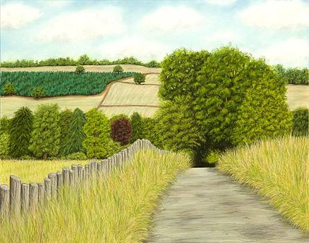 A country lane in the Cotswolds by Rebecca Prough