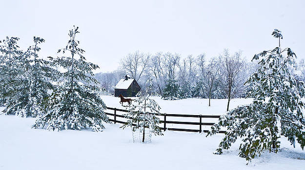 A Country Winter by Christopher L Nelson