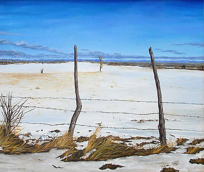 A Desert Winter by Jessica Tookey