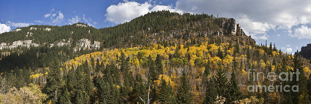 A Falls Day in Spearfish Canyon of South Dakota by Steve Triplett