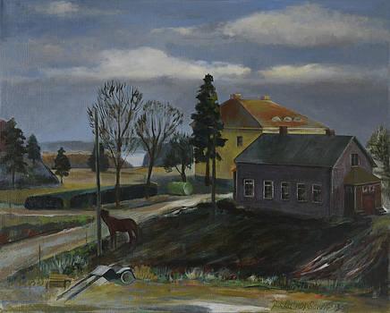 A Farm by Jukka Nopsanen