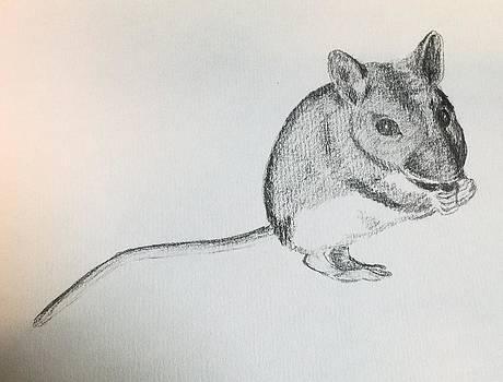A Field Mouse  by Vicky  Hutton