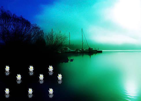 A foggy Day at Log Boom Park on Lake Washington by Eddie Eastwood
