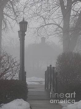 A foggy night in the burbs  by Linda Xydas