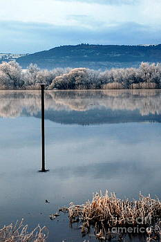 Joe Cashin - A frosty morning