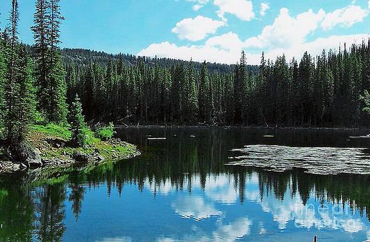 A Grand Mesa Lake View by Sherry Vance