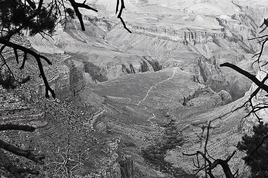 A Grand View by Richie Stewart