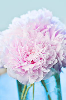 A happy life - Peonies 1 by Risa L