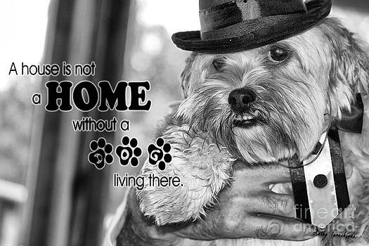 A House Is Not A Home Without A Dog Living There by Kathy Tarochione