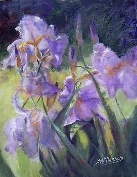 A Iris Spring Day   by Sharen AK Harris