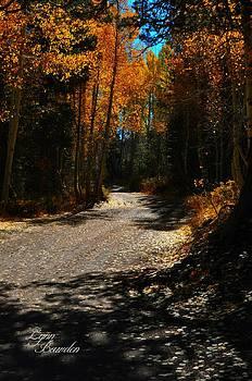 Lynn Bawden - A Leisure Drive