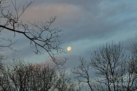 A Morning Moon by Jay Nodianos