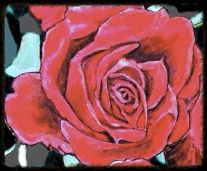 Red Rose All Dressed Up for Black Suit and Tie Occasion by Kimberlee Baxter