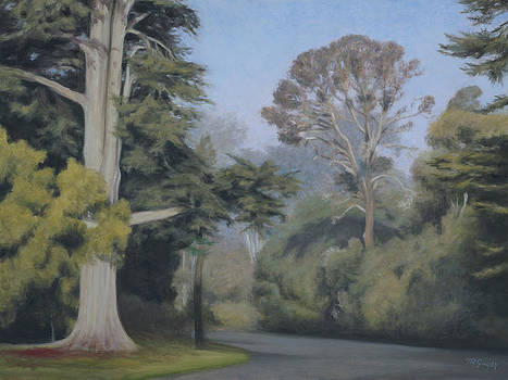 A new Day in Golden Gate Park by Terry Guyer