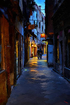 A Night in Venice by SM Shahrokni