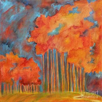 A Path to Wonder by Elizabeth Fontaine-Barr