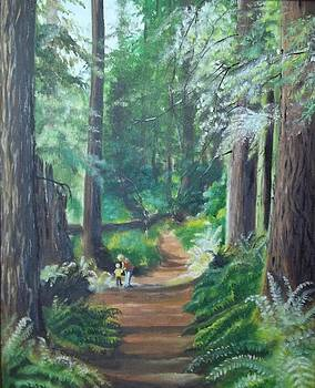 A Peaceful Walk in the Redwoods by Terry Godinez