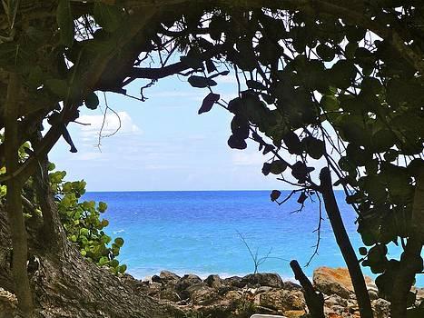 A peek into paradise by Jennifer Lamanca Kaufman