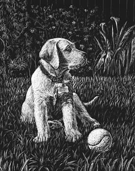 Irina Sztukowski - A Puppy With The Ball
